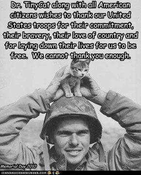 Dr. TinyCat along with all American citizens wishes to thank our United States troops for their commitment, their bravery, their love of country and for laying down their lives for us to be free.  We cannot thank you enough.