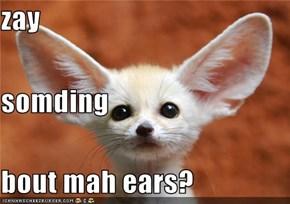 zay somding bout mah ears?