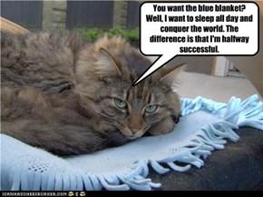 Selfish kitteh