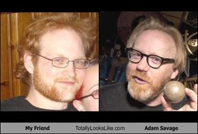My Friend Totally Looks Like Adam Savage
