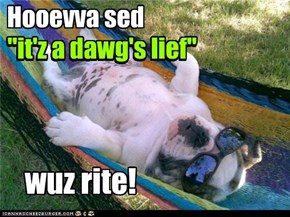 "Hooevva sed ""it'z a dawg's lief"""