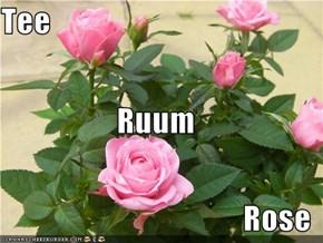 Tee  Ruum Rose