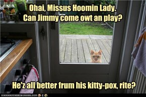 Ohai, Missus Hoomin Lady. Can Jimmy come owt an play?