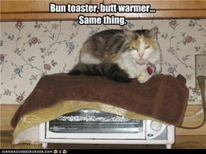 Bun toaster, butt warmer... Same thing.