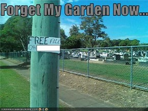 Forget My Garden Now...