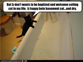 But Iz don't wants to be baptized and welcome ceiling cat in my life.  Iz happy bein basement cat...and dry.