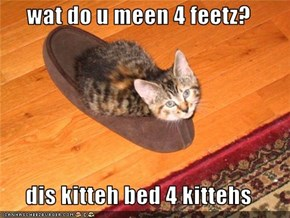 wat do u meen 4 feetz?  dis kitteh bed 4 kittehs