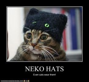 NEKO HATS