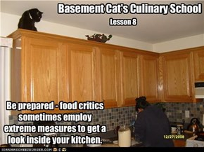 Basement Cat's Culinary School, Lesson 8