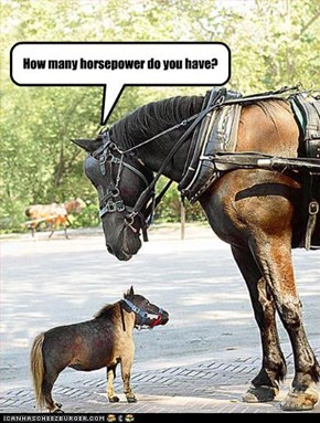 How many horsepower do you have?