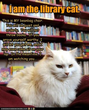 Librarian cat rules!