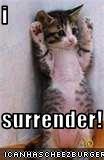 i  surrender!