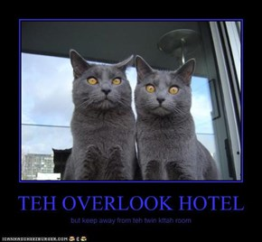 TEH OVERLOOK HOTEL