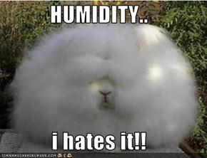 HUMIDITY..  i hates it!!