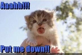 Aaahh!!!  Put me down!!