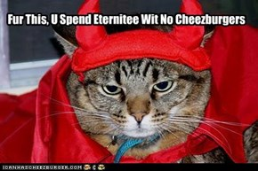 An Eternitee Wit No Cheezburgers