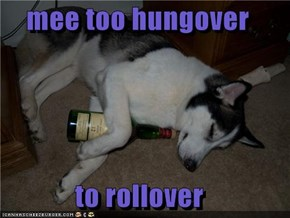 mee too hungover  to rollover
