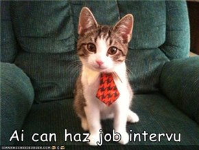 Ai can haz job intervu