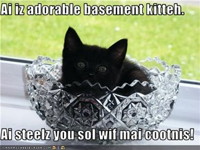 Ai iz adorable basement kitteh.  Ai steelz you sol wif mai cootnis!