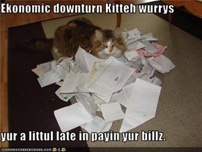 Ekonomic downturn Kitteh wurrys  yur a littul late in payin yur billz.