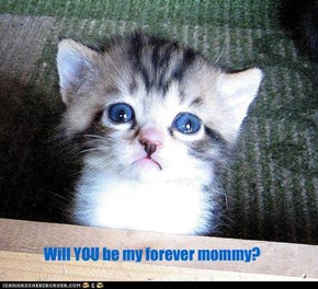 Will YOU be my forever mommy?