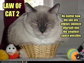 LAW OF CAT 2