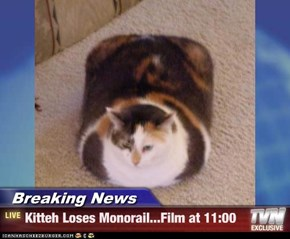 Breaking News - Kitteh Loses Monorail...Film at 11:00