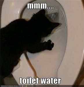mmm....  toilet water
