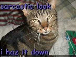 sarcastic look   i haz it down