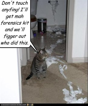 Don't touch anyfing! I'll get mah forensics kit and we'll figger out who did this.
