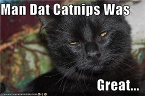 Man Dat Catnips Was  Great...