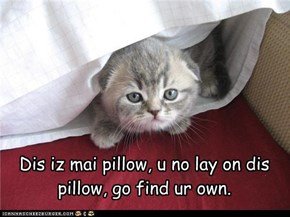 Dis iz mai pillow, u no lay on dis pillow, go find ur own.