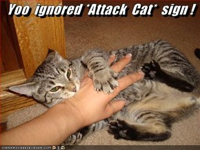 Yoo  ignored *Attack  Cat*  sign !