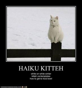 HAIKU KITTEH