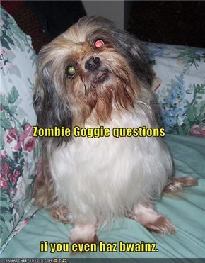 Zombie Goggie questions  if you even haz bwainz.
