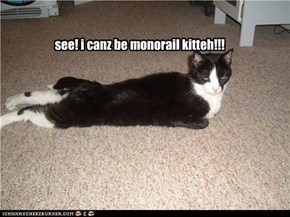 see! i canz be monorail kitteh!!!