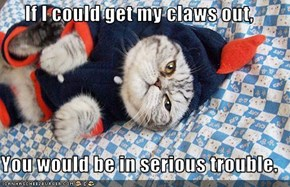 If I could get my claws out,   You would be in serious trouble.