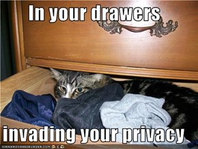 In your drawers  invading your privacy