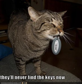 they'll never find the keys now