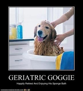 GERIATRIC GOGGIE