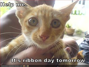 Help me.  It's ribbon day tomorrow