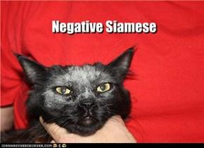 Negative Siamese