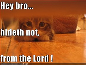 Hey bro... hideth not, from the Lord !