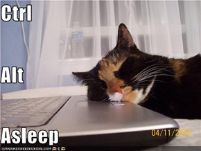 Ctrl Alt Asleep