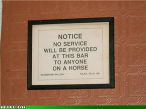 So a Horse Walks Into a Bar...