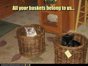 All your baskets belong to us...