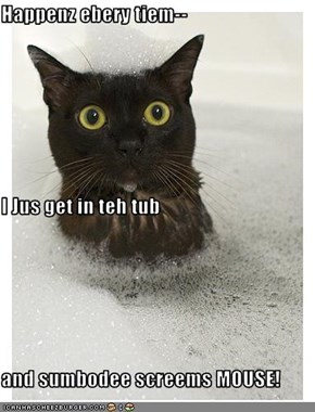 Happenz ebery tiem-- I Jus get in teh tub and sumbodee screems MOUSE!