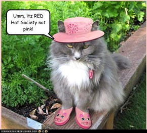 Umm, itz RED Hat Society not pink!