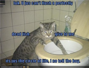 luk. U jus can't flush a perfectly dead fish.                            give to me its jus the circle of life, I no tell the boy.