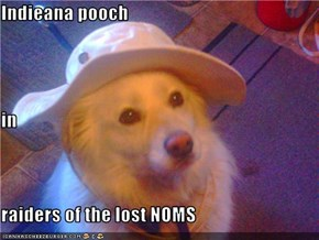 Indieana pooch in raiders of the lost NOMS